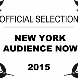 New York Audience Now 2015